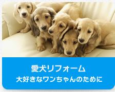 愛犬リフォーム